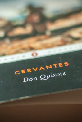 Don Quixote (Cervantes)