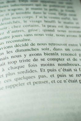 HP Primo Levi (passage 2)